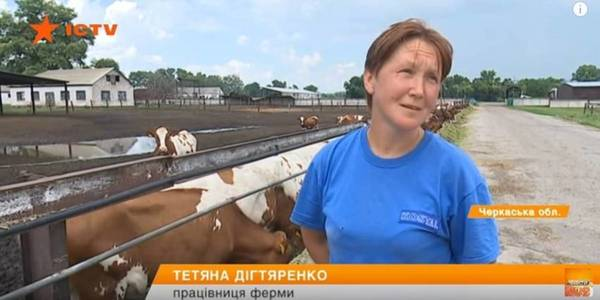 Milkmaid's salary of UAH 20 thousand and smooth roads: life of hromada in Cherkasy Oblast