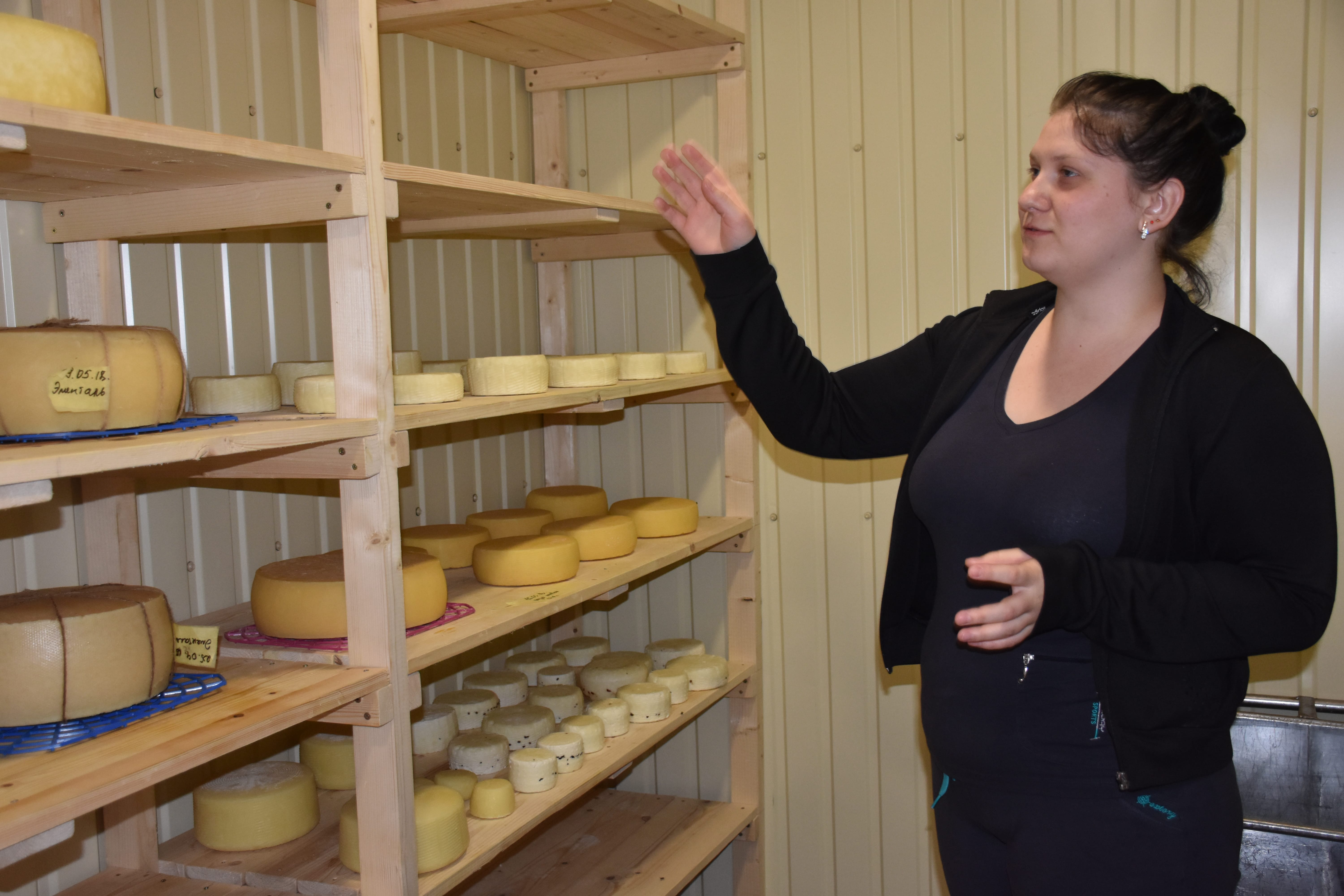 Dairy cooperative, bicycle rickshaw and donors' grants - Illinivska hromada is ready to develop business in countryside